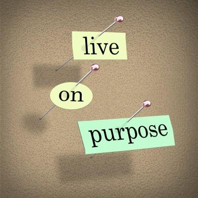 purpose driven life summary pdf