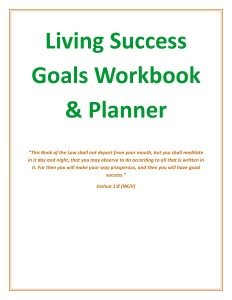 2016 Goals Workbook & Planner